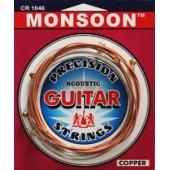 Струны Solid Monsoon CR1048 (010-048) для акустической гитары