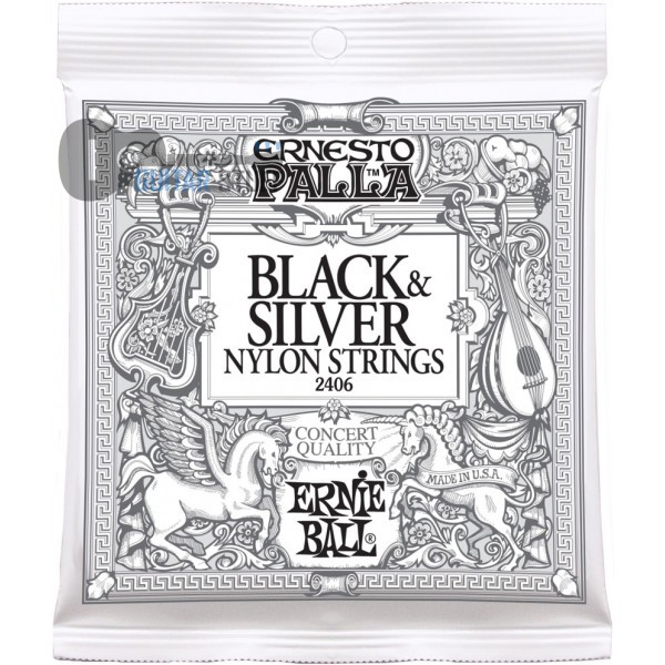 Ernie Ball 2406 Black and Silver